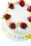 Chocolate Strawberry Lemon Torte Stock Photos