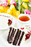Chocolate Strawberry Lemon Torte Stock Photography