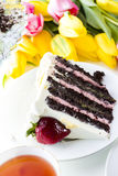 Chocolate Strawberry Lemon Torte Royalty Free Stock Images