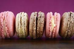 Chocolate, strawberry and vanilla macaroons. Royalty Free Stock Photo