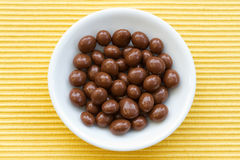 Chocolate sultanas Royalty Free Stock Photo