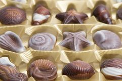 Chocolate sweets. Chocolate candies formed as different seashells Stock Photography
