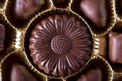 Chocolate sweets. In box close up Stock Photo