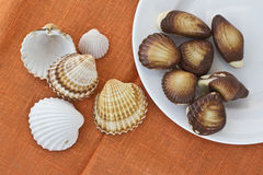 Chocolate sweets and seashells. Top view of several chocolates on white plate in forms of sea shells and several sea shells on orange linen background Royalty Free Stock Photo