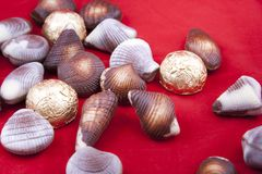 Chocolate sweets in shape of shells Royalty Free Stock Images
