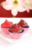 Chocolate swirl cupcakes Royalty Free Stock Photography