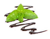 Chocolate syrup with fresh mint Royalty Free Stock Photography