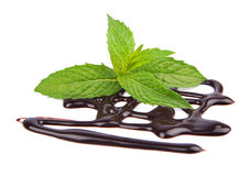 Chocolate syrup with fresh mint Stock Photography