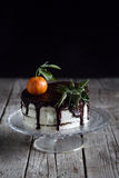 Chocolate and tangerine cake with cream and gingerbread Stock Images