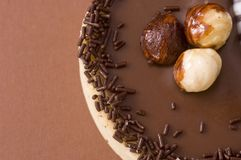 Chocolate tart Royalty Free Stock Photos