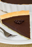 Chocolate tart pie Stock Images