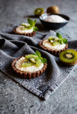 Chocolate tartlets filled with coconut cream and topped with kiwi slices. Delicious chocolate tartlets filled with coconut cream and topped with kiwi slices Stock Photo