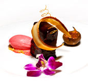 Chocolate terrine. With pink ice and passion fruit Stock Images