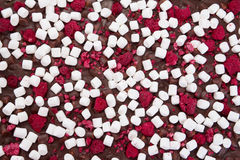 Chocolate texture background. Close-up chocolate texture background pattern with marshmallows Stock Images