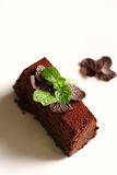 Chocolate torte with mint. A slice of flour-less chocolate torte decorated with chocolate leaves and mint Stock Photos