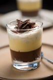 Chocolate trifle Stock Photography