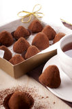 Chocolate truffle. Homemade chocolate truffles with cacao Royalty Free Stock Photos