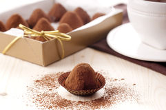 Chocolate truffle. Homemade chocolate truffles with cacao Royalty Free Stock Photo