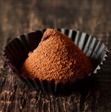 Chocolate truffle. stock photos