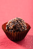 Chocolate truffle ball Royalty Free Stock Photos