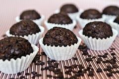 Chocolate truffle. Royalty Free Stock Photo