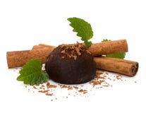 Chocolate truffle candy Royalty Free Stock Photo