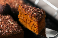 Chocolate truffle carrot cake slice closeup.  royalty free stock photography