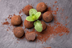 Chocolate truffle. Delicious truffle chocolate with mint leaf Royalty Free Stock Photo