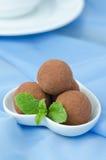 Chocolate truffle with fresh mint Stock Photos