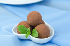 Chocolate truffle with fresh mint Stock Photography