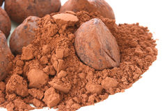 Chocolate truffle pralines sweets in cocoa powder Royalty Free Stock Images