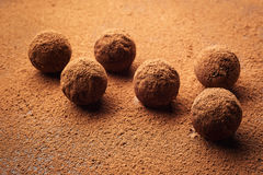 Chocolate truffle,Truffle chocolate candies with cocoa powder.Ho Stock Images