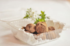 Chocolate truffles. Delicious chocolate truffles with white flowers in the background Stock Photos