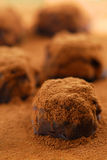Chocolate truffles. Macro image of dark chocolate truffles sprinkled with cocoa powder royalty free stock image