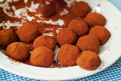 Chocolate truffles. Covered in cocoa powder on a plate Royalty Free Stock Photos