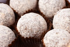 Chocolate truffles. In brown cases covered with icing sugar Stock Image