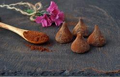 Chocolate truffles.  Cacao powder pure. Stock Photos