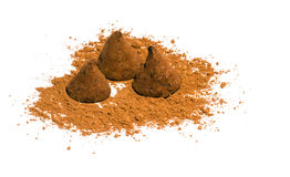 Chocolate truffles. Chocolate candies - truffles with cocoa powder on a white background Stock Images