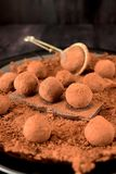 Chocolate truffles. Covered with cacao powder on a black plate royalty free stock image