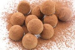 Chocolate Truffles. Coated cocoa powder on white background Royalty Free Stock Images