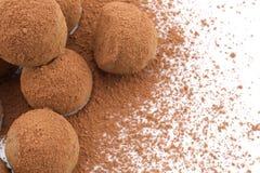 Chocolate Truffles. Coated cocoa powder on white background Royalty Free Stock Photo