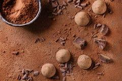 Chocolate truffles with cocoa powder Stock Photos