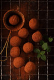 Chocolate truffles cocoa powder dusted. And sieve, shallow dof Royalty Free Stock Photography