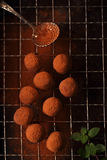 Chocolate truffles cocoa powder dusted. And sieve, shallow dof Royalty Free Stock Photos
