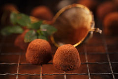 Chocolate truffles cocoa powder dusted. And sieve, shallow dof Royalty Free Stock Image