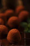 Chocolate truffles cocoa powder dusted. And sieve, shallow dof Royalty Free Stock Images