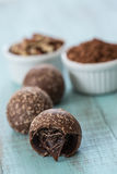 Chocolate Truffles with Cocoa Powder and Nuts Royalty Free Stock Photos