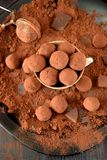Chocolate truffles covered with cacao. In a ceramic cup stock photo