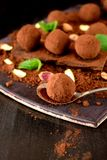 Chocolate truffles covered with cacao powder. Pistachio nuts, chocolate and mint stock photography
