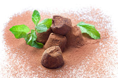 Chocolate truffles with fresh mint. Handmade chocolate truffles with fresh mint heart-shaped dusted with cocoa powder, on white Royalty Free Stock Photography